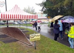 viii-pola-nadziei-w-gmin-pawl-07-161020