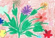 x_kwiatki_dla_jp2_Julia_Mieszud.JPG