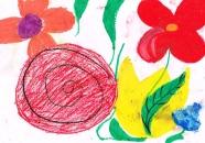 x_kwiatki_dla_jp2_Laura_Wieczorkowska.JPG