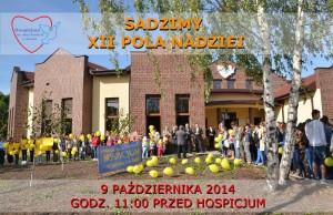 XII Pola Nadziei
