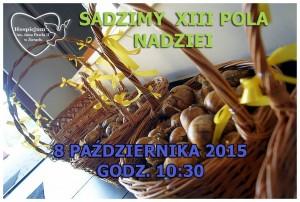 13_pola_nadziei