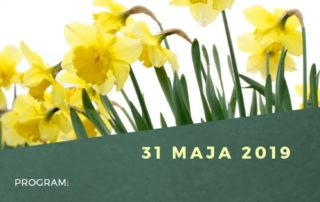 XVI Marsz Nadziei 2019